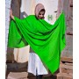 Harlequin Green Pure Solid Pashmina Shawl