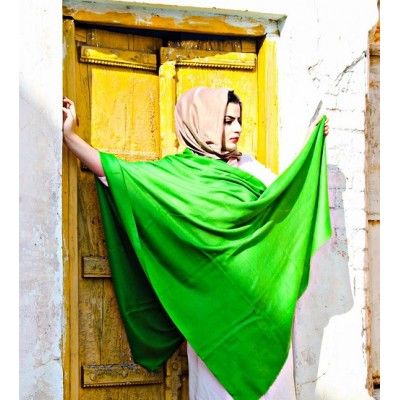 Harlequin Green Pure Solid Pashmina Shawl