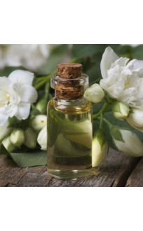 Jasmine Essential Oil (Pair) By SC