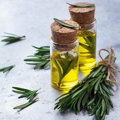 Rosemary Essential Oil (Pair) By SC