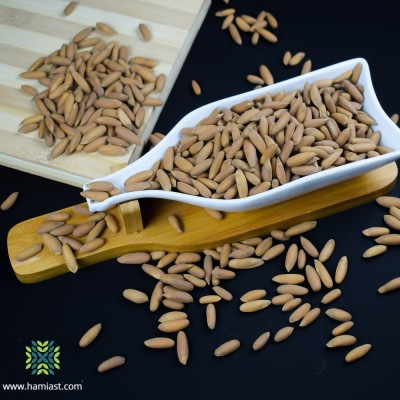 The Heavenly Pine Nuts Shelled (Chilgoza)