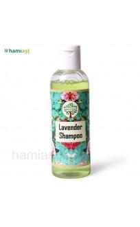 Lavender Shampoo By Saklain's Coterie (100 ml)